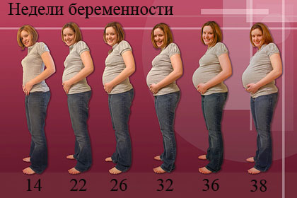 Похудение во время беременности